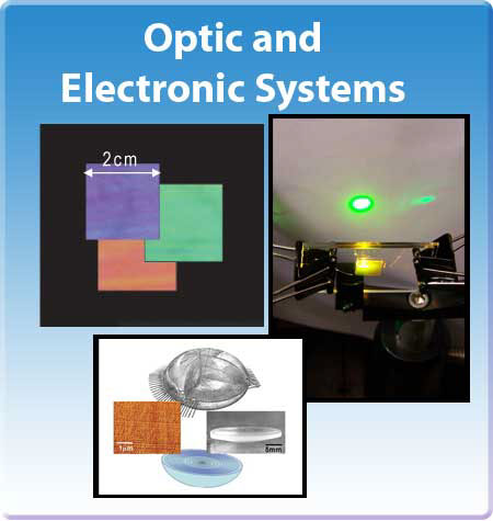 CLiPS Optic and Electronic Systems